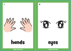 Open Close Song Flashcards