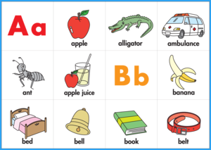 Phonics Ring Cards Color