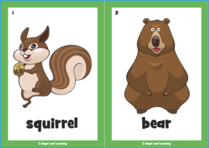 Forest Dance Flashcards