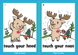 Touch Your Head Flashcards
