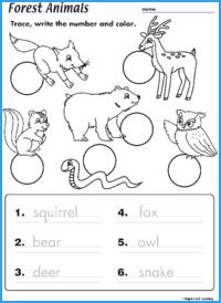 Forest Animals Worksheet