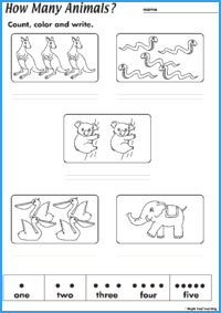 How Many Animals Worksheet