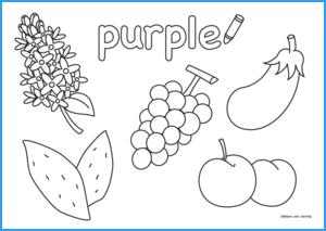 Purple Coloring Sheet
