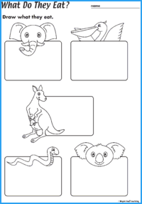 What Do They Eat? Worksheet