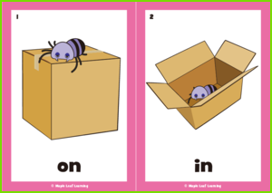 Prepositions Flashcards